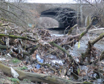 One of Kelly O´Day´s photos of trash along the Tacony